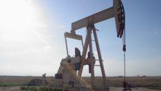 Petrol ve Doğal Gaz nasıl bulunur?