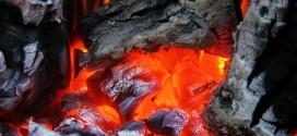 ash 2591 1280 1 272x125 - Kömür Nedir, Kömür Nasıl Oluşur?