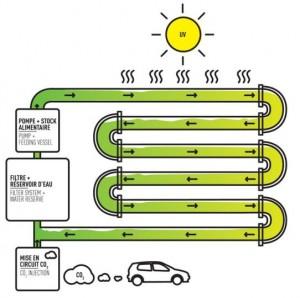 Yosunla Biyoyakıt Üretmek 300x298 - İsviçre'de Otoyolda Yosunla Biyoyakıt Üretilecek!