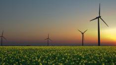 Almanya, Yenilenebilir Enerji Kullananlara Para Ödedi !