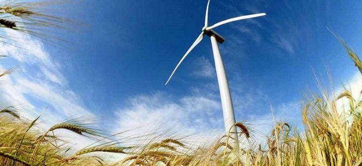 Rüzgar Nedir ve Nasıl Oluşur?