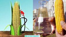 Biyokütle Enerjisinin Dezavantajları