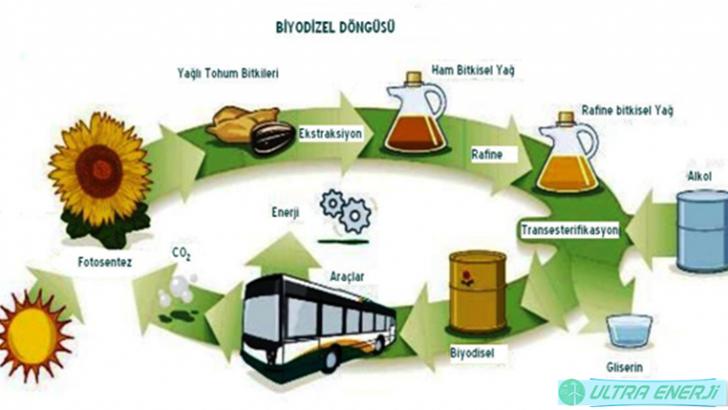 Biyokütle Enerjisinin Çevresel Etkileri